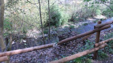 Photo of Unbekannte beschädigen einen Holzzaun