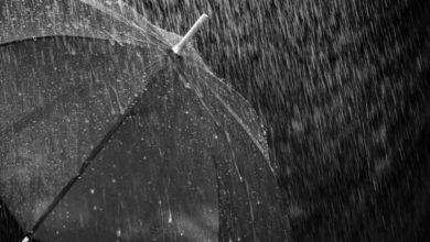 2020-05-05-Regenschirm