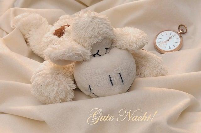 Zu einem erholsamen Schlaf gehört auch ein gutes Bett.
