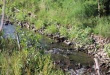 Photo of Untere Wasserbehörde des Kreises informiert