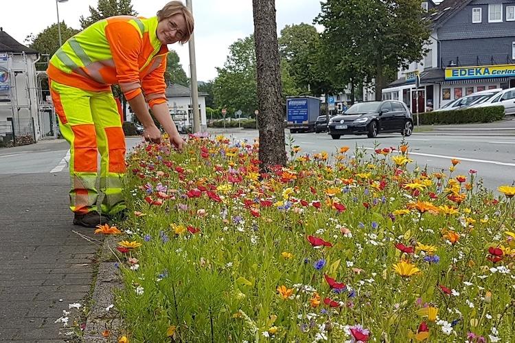 Photo of Blumen-Paradiese an Straßen in der Gemeinde Bestwig