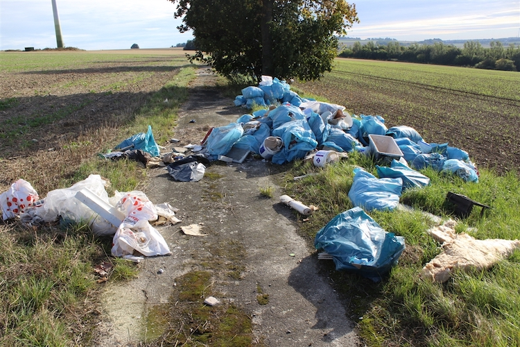 Photo of 50 Müllsäcke illegal entsorgt – Hinweise erwünscht!
