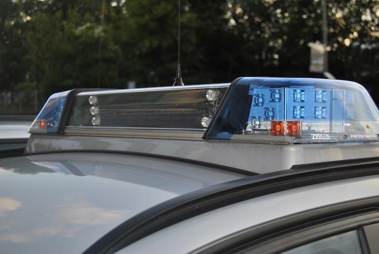 2020-08-04-Polizei-Tier-Kreisverkehr-Fußgängerin-Firmengelände-Tannenbäume-Auto-Nötigung-Brandstiftung-Raub-Drogeriemarkt-Rucksack-Einbrecherinnen
