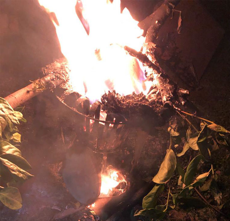 Photo of Fliegendes Brennholz an der Dankelmert