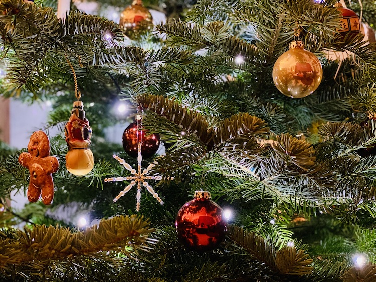 2021-01-14-Weihnachtsbaum