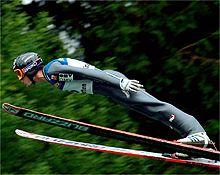 springer_20090817